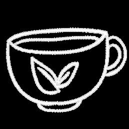 thé camellia sinensis populaire