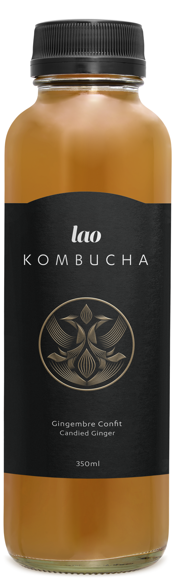 Ginger kombucha, low sugar, only 1g per bottle, Keto, Ketogenic, Available in Quebec, Montreal, Canada