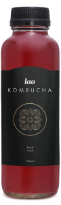 Kombucha green tea, elderberry, Quality, Quebec, Montreal, Authentic, premium, best, canada