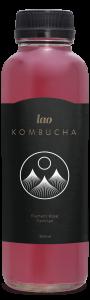 premium kombucha, canada, montreal, quebec
